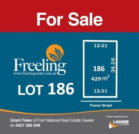 Lot 186 Power Street, Freeling SA 5372