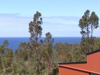 21339 Tasman Highway
