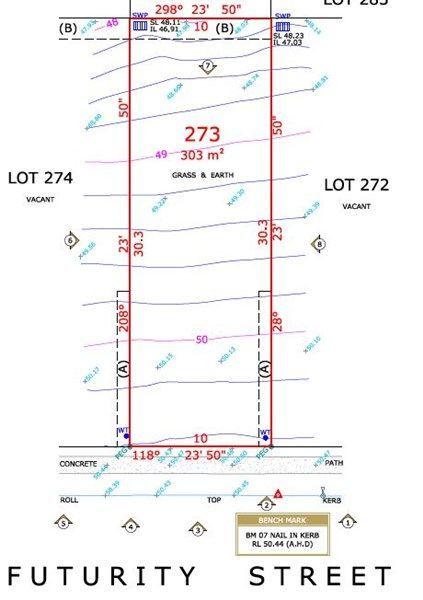 Lot 273 Futurity Street, NSW 2765