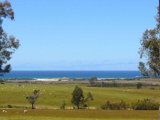 19595 Tasman Highway, Seymour TAS 7215