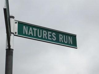 0 Natures Run