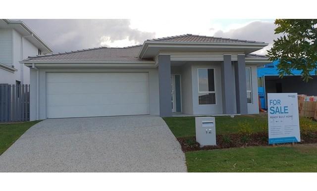12/null Arundel Springs Av, Arundel QLD 4214
