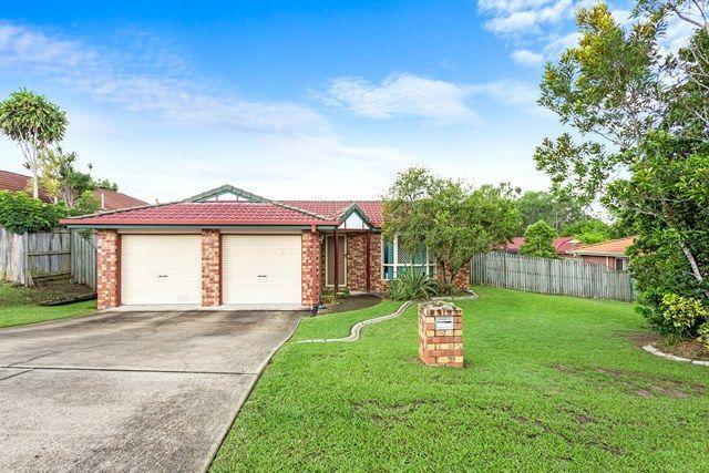 3 Bettong Place, Doolandella QLD 4077