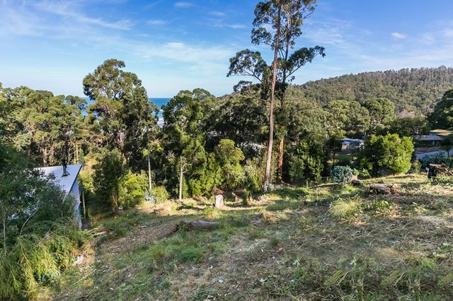 4 The Boulevarde, Wye River VIC 3234