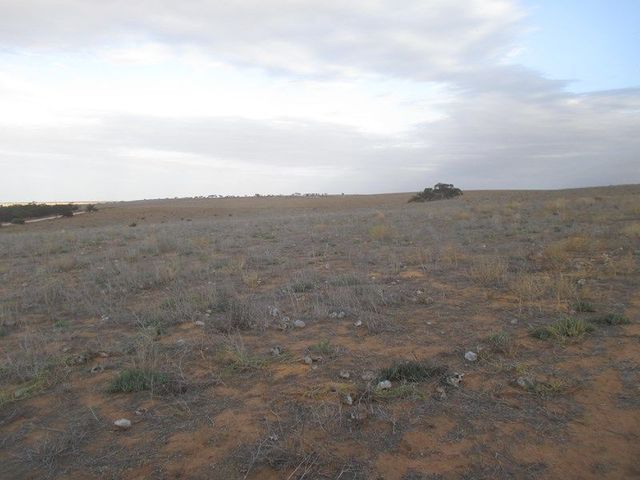 Lot 137 Hundred Line Road, Copeville SA 5308