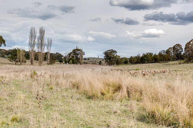 466 Bulleys Crossing Road, Goulburn NSW 2580