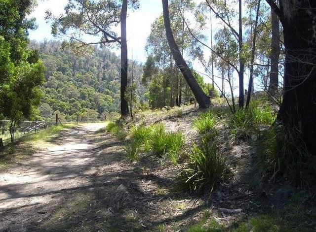 Lot 2 Nicklasons Road, Pyengana TAS 7216