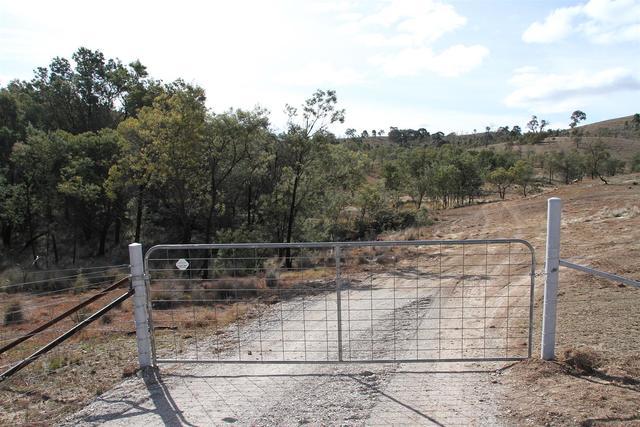 1487 Murrumbateman Road, Murrumbateman NSW 2582