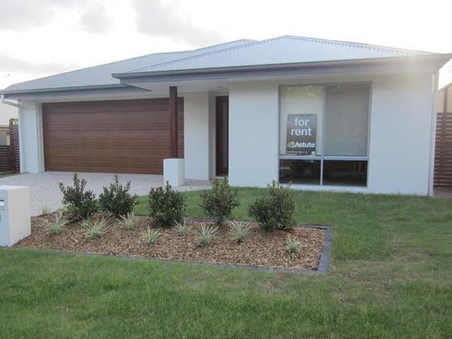 26 Shelduck Street, Upper Coomera QLD 4209