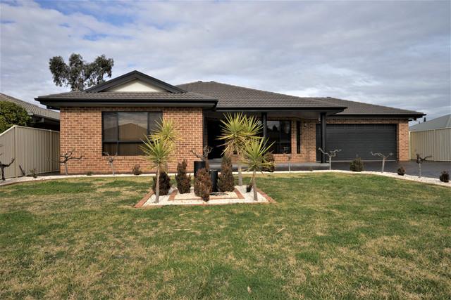 56 Verri Street, Griffith NSW 2680