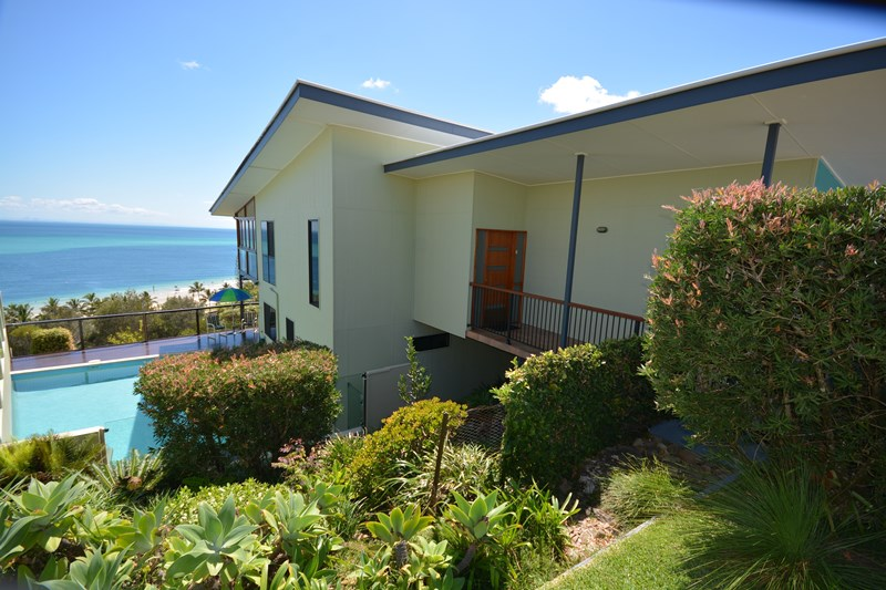4 trochus place tangalooma