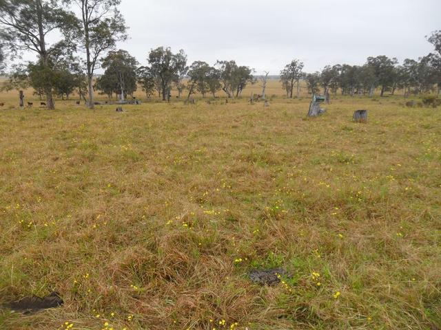 lot7 Butterwick Rd ,butterwick 2321 In An Unregistered Plan Of Subdivision, Butterwick NSW 2321