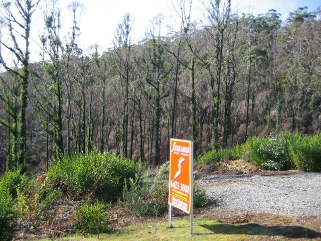 Lot 21 Forest Heights Drive, Tugrah TAS 7310