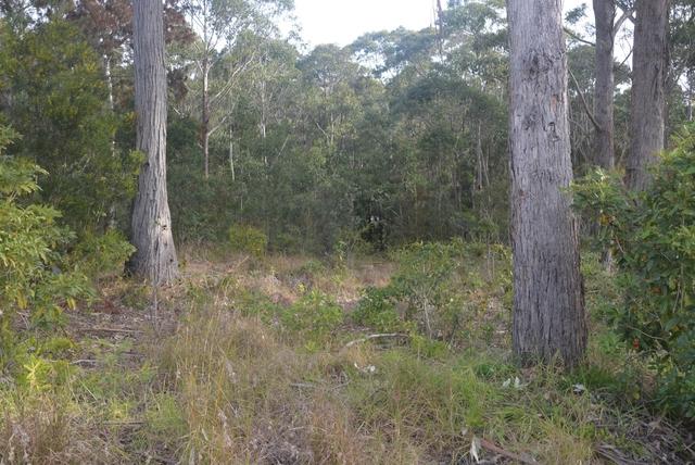 84 Edward Road, NSW 2536