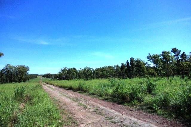 Lot 1268 Coach Road, NT 0845