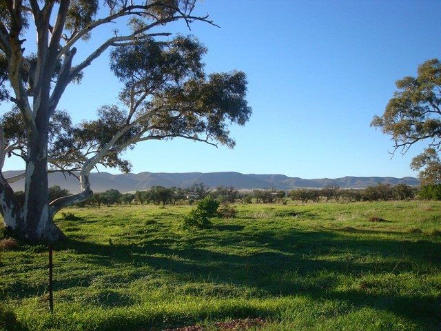 Lot 180 Off Gulf View Drive, Napperby SA 5540