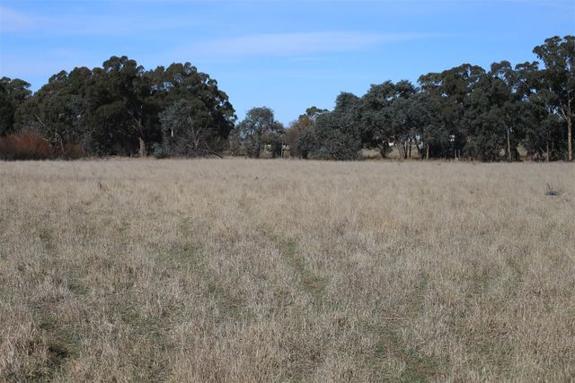 Lot 163 Flacknell Creek Road Via Gunning, Goulburn NSW 2580