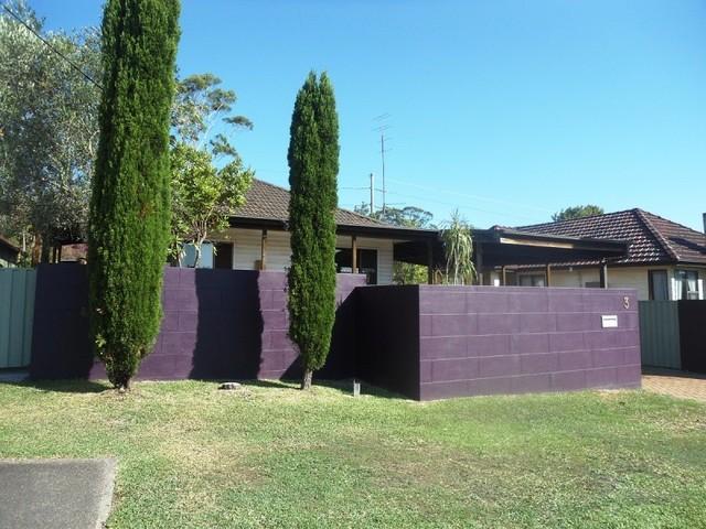 3 Fraser Street, Jesmond NSW 2299