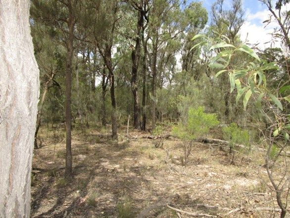 LOT 195 Myra Road, Tara QLD 4421