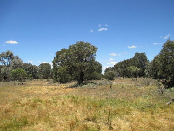 LOT 49 Kytes Road, Tara QLD 4421