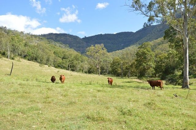 (no street name provided), Townson QLD 4341