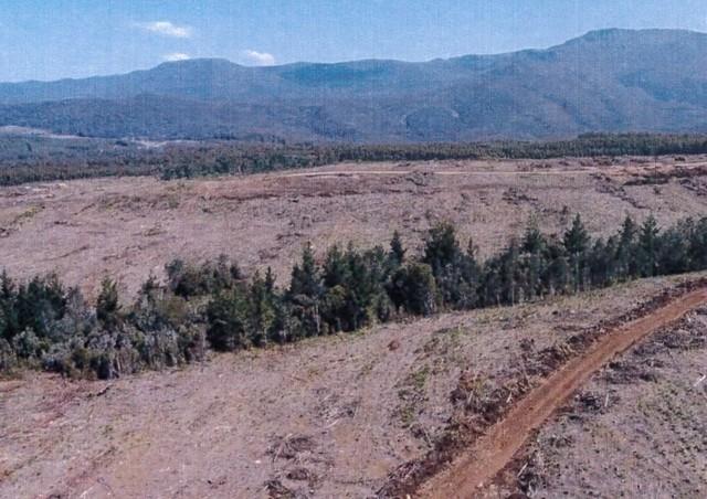 - Loongana Road, TAS 7315
