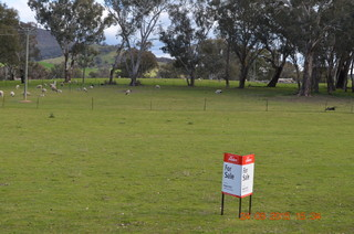 Lot 3 Gocup Road Tumut NSW 2720