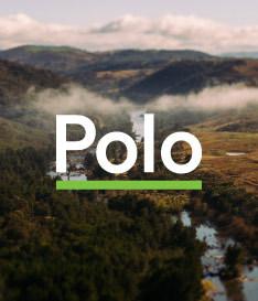 Polo - Polo, ACT 2611
