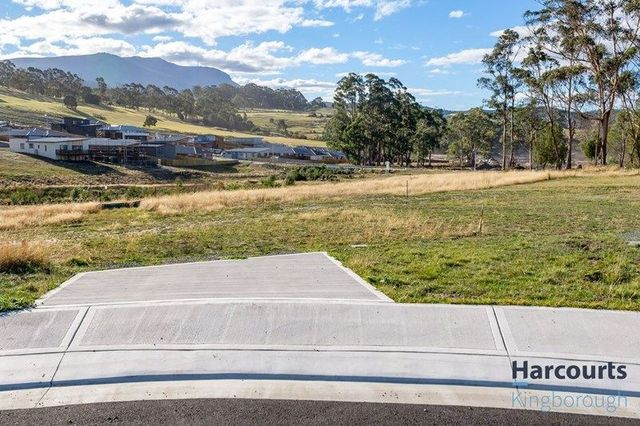 11 Trout Court, TAS 7050