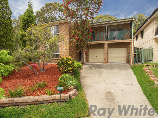 19 Andrew Close, North Lambton NSW 2299