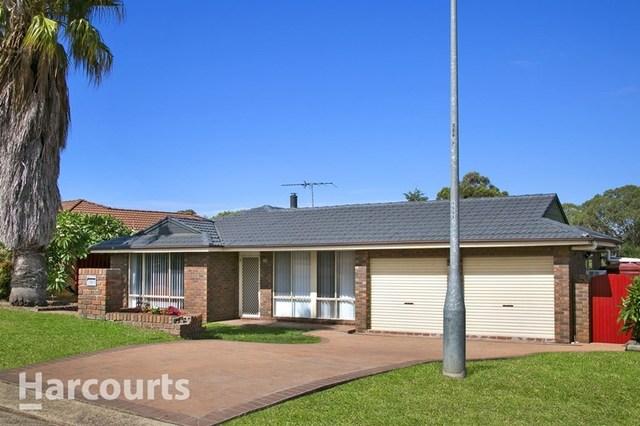 86 Chasselas Avenue, Eschol Park NSW 2558