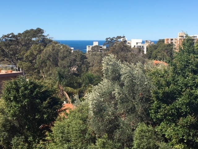 12/142 Old South Head Road, Bellevue Hill NSW 2023