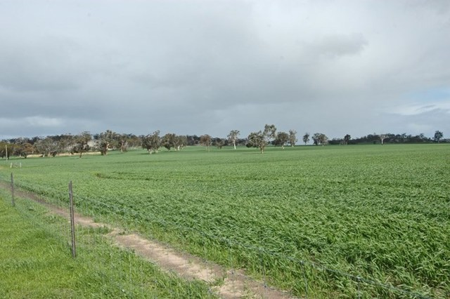 Lot 1/null Kokeby West Road, Beverley WA 6304