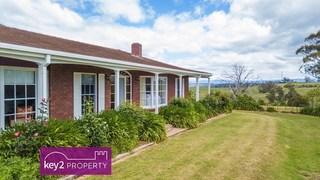 40557 Tasman Highway