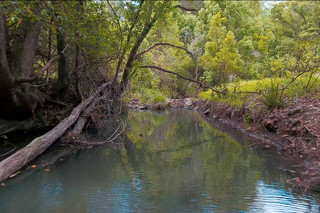 100 Bishops Creek Road