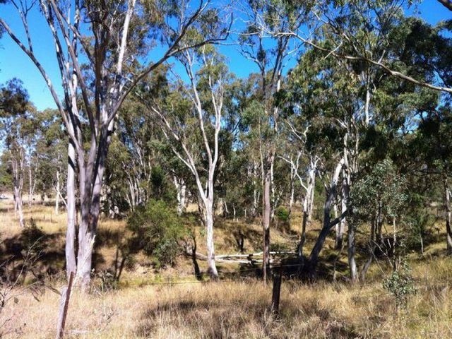 Lot 1 Ahern Lane, Pratten QLD 4370