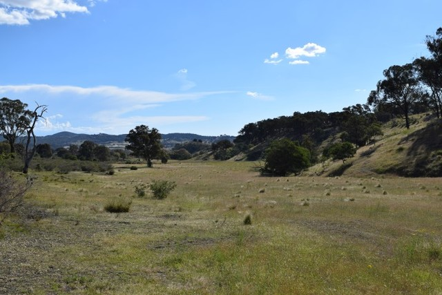 Lot 5, 1225 Yass River Road, NSW 2582