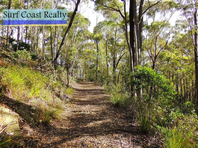 . Gardiners Creek Road, St Marys TAS 7215