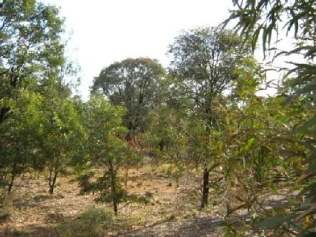 Lot 59 Kytes Road, Tara QLD 4421