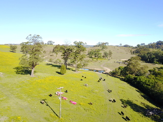 513, 530 & Lot 1 Chichester Road Chichester Via Dungog NSW 2420