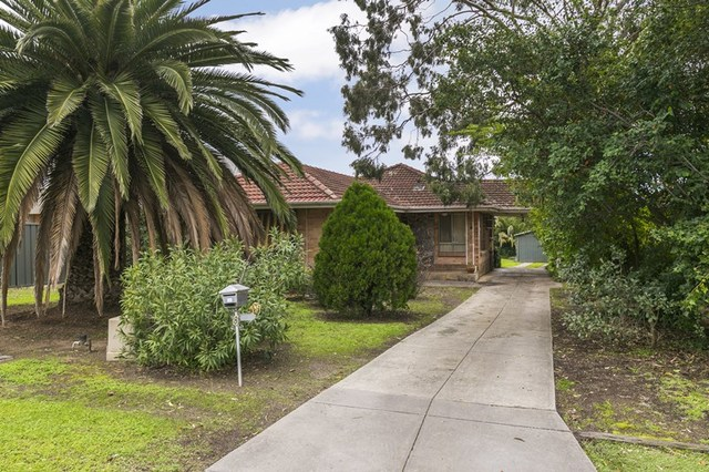 8 Harrison Court, Magill SA 5072