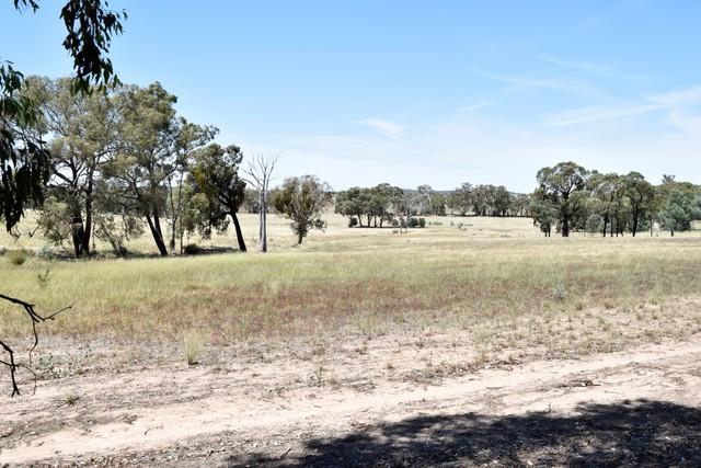 98 Adelargo Road, Grenfell NSW 2810