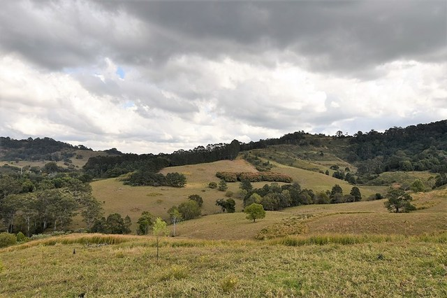 537 Tuntable Creek Road, Tuntable Creek NSW 2480