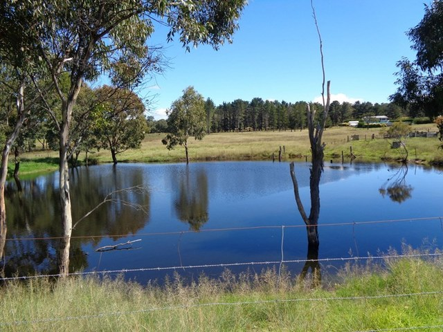 Lot 49 Stabiles Road, Stanthorpe QLD 4380