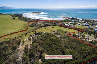 Redbill - 39 Tasman Highway