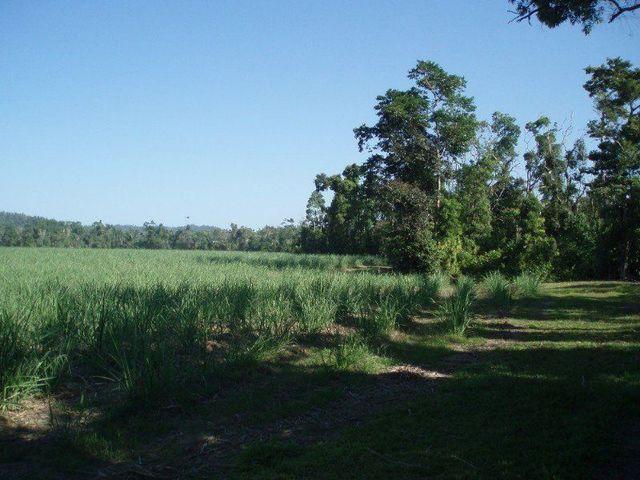 Granadilla Drive, QLD 4855