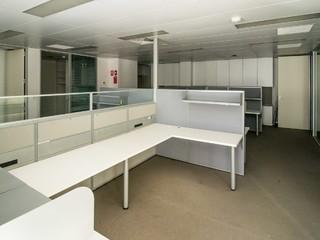 41 St Andrews Street Maitland NSW 2320