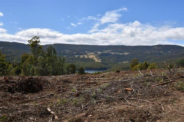 Lot 1 Dolcoath Road, TAS 7310