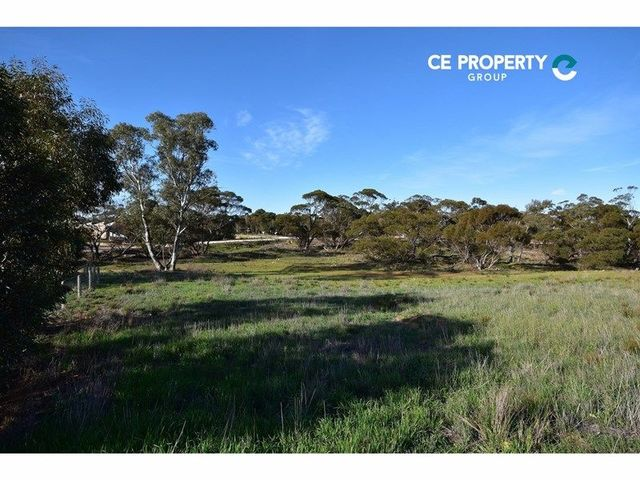 Lot 189/null Eichler Road, Punthari, SA 5238
