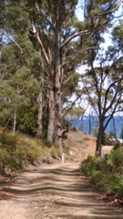 758 Roaring Beach Road